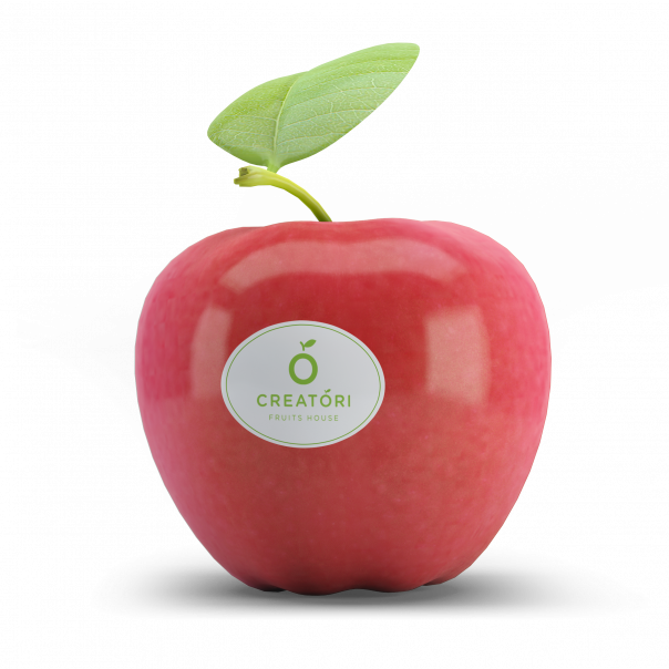 04 Fruit Sticker Mock-Up2