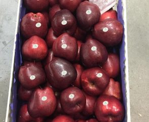 Red Delicious2